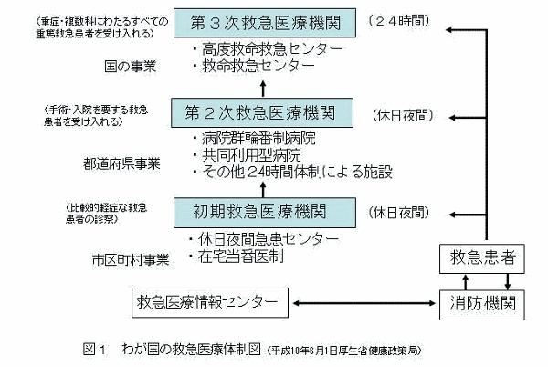 image1.gif
